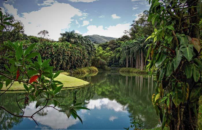 Green outdoors Inhotim Museum in Brumadinho