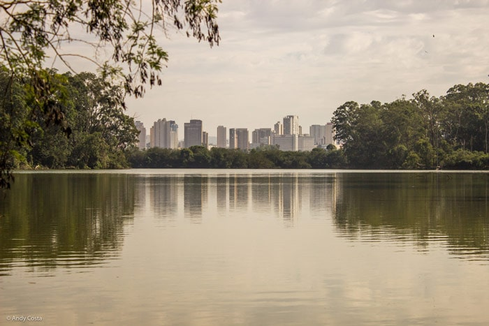View of buildings from Ibirapuera Park