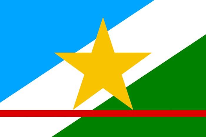 Roraima Brazil State Flag