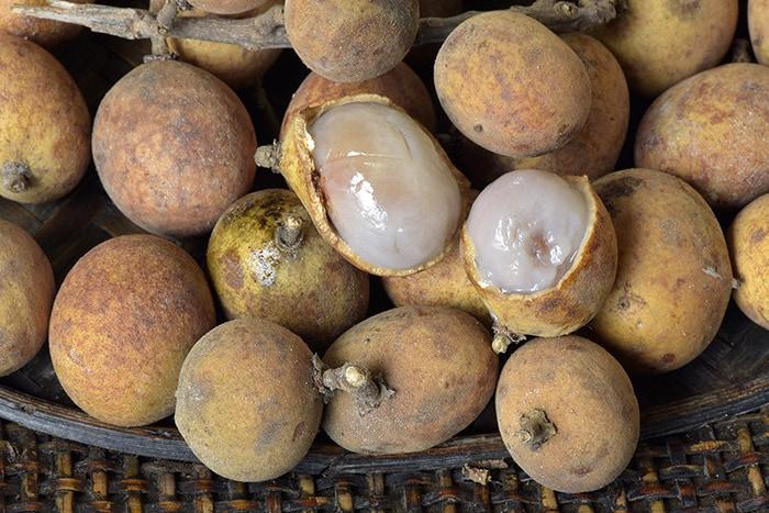 Pitomba fruit