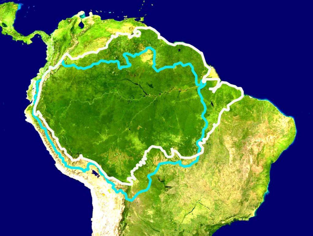 Amazon Rainforest and Biome